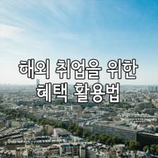 해외 취업을 위한 월드잡플러스 활용법