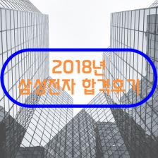 2018 삼성전자 소프트웨어 분야 최종합격 후기