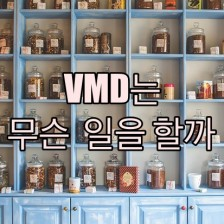 VMD는 어떤 일을 하는 사람일까요?